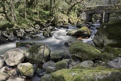 downstrem (Peter Trott) Tags: shaugh bridge river bolders rocks plym devon uk england moss explore
