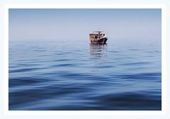 @ Dibba (Madhusudanan Parthasarathy) Tags: dibba musandam oman muscat holidaydhow dhowcruise ocean arabic sea beach ship boat holiday summer vaccation uae