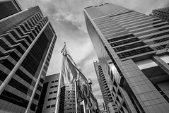 DSC00596 (Damir Govorcin Photography) Tags: blackwhite monochrome darling harbour sydney cbd buildings architecture natural light wide angle sky sony a7rii zeiss 1635mm perspective creative composition flags