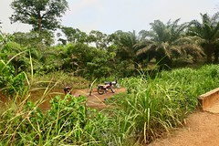 "On my way by motorbike to Bo, the second largest city in Sierra Leone, in order to transfer to Freetown.  March 2017 #itravelanddance • <a style=""font-size:0.8em;"" href=""http://www.flickr.com/photos/147943715@N05/33797965596/"" target=""_blank"">View on Flickr</a>"