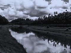 So bright, it looks beautiful. (silmihidayat) Tags: river sky sunnyday jawatimur photograhpy iphone iphone4 cloud reflection amateurs water blackandwhite abstract