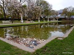 Spring (herman hengelo) Tags: trier kurfürstlichepalais deutschland duitsland keurvorstelijkpaleis tuin palastgarten