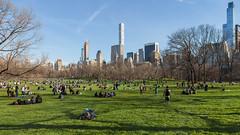 Sheep Meadow (Robert Wash) Tags: newyork ny newyorkcity nyc manhattan centralpark sheepmeadow