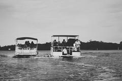 Waiting (Swebbatron) Tags: australia brisbane 2008 goldcoast queensland sanctuarycove travel ivd fuji pirates work boats coomerariver blackandwhite mono radlab