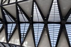 IMG_0414_DxO (Olivierleterrien) Tags: toit lignes plafond géométrie lyon gare exupéry géométrique architecture effet doptique trapèze 80d 1750 sigma