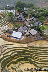 SaPa_9445 copie (JCS75) Tags: asia asie canon vietnam sapa