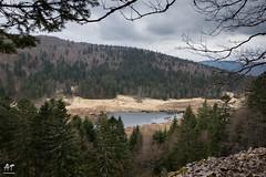 Tourbiére de Machais (AT Photographie) Tags: paysages vosges eau reflets forêt nikon printemps réserve nature naturelle tourbière