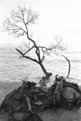 2017-04-19-PAN400-010m (Mike Krupka Photography) Tags: landscape pancro 400 bergger ontario