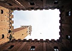 (Fred Matos) Tags: siena italy europe fredmatos torredeimangia palazzocomunale thecultureofeurope photoquest