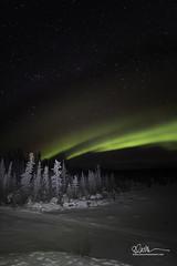 _64A2929 (Ed Boudreau) Tags: alaska alaskalandscape aurora auroraborealis glennallen landscape landscapephotography nightphotography nightscene northernlights snow snowfield stars winter winterscape winterscene usa