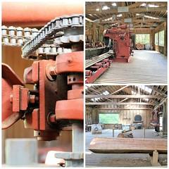 Herring Bay Lumber Co collage (karma (Karen)) Tags: ketchikan alaska herringbaylumberco herringcove sawmill collages picmonkey mmm cmwd