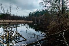Highland Creek (vernonbone) Tags: 1855kitlens 2016 2017 april d3200 highlandcreek lens ontario reflections birds garden landscape longexposure nikon outside sigma winter