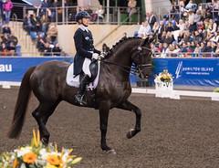 17429_Sydney_CDI_GPFS_0096.jpg (FranzVenhaus) Tags: athletes dressage australia equestrian riders horses ponies rug siec nsw sydney newsouthwales aus
