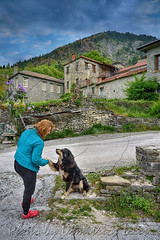 Nice to meet you (Dimitil) Tags: kastaniani mastorohoria konitsa epirus greece hellas kastanea kastania stone stonevillages traditionalvillages traditionalstonevillages picturesquevillages mountainvillages dogs animals people nature traditionalsettlements macedoniagreece makedonia