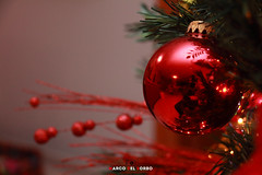 IMG_0676 (marcodelsorbo81) Tags: natale albero tree christmas palla ball