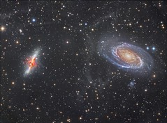 M81, M82 and Arps Loop (Terry Hancock www.downunderobservatory.com) Tags: camera sky monochrome night stars photography mono major pier back backyard fotografie photos thomas space shed science images astro apo m observatory telescope ngc3034 galaxy astrophotography astronomy imaging messier ccd universe cosmos ursa deepspace ix paramount luminance tmb lodestar teleskop ngc3031 astronomie byo f7 m82 m81 refractor deepsky f55 holmberg bodes astrograph autoguider starlightxpress 130ss tmb92ss mks4000 gt1100s qhy9m competition:astrophoto=2013