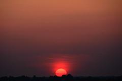 The Longest Day Begins (Eddie C3) Tags: newyorkcity sun sunrise bronx solstice summersolstice longestday todayssunrise