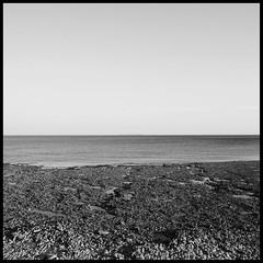 13/01/13 (Anto Retouche) Tags: ocean sea blackandwhite bw mer rock canon square landscape reflex noiretblanc ciel canon350d 365 paysage rocher numerique carr f9 18mm atlantique mare charentemaritime project365 projet365 1100e