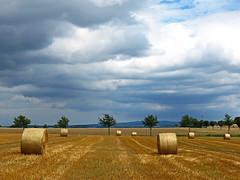 Upcoming summer storm (RainerSchuetz) Tags: storm field clouds cornfield day bales baleofstraw blinkagain bestofblinkwinners blinksuperstars blink4gallery