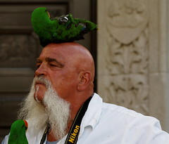 A Unique Perch (AlanW17) Tags: street ottawa parrot sparksstreet buskerfest2013