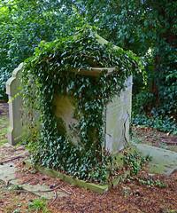 Queenhill, Worcestershire, St Nicholas (Tudor Barlow) Tags: summer england churches panasonic worcestershire listedbuilding parishchurch gradeiilistedbuilding queenhill lumixfz200