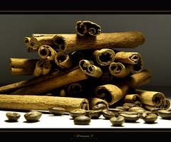 cinnamon (aniribe) Tags: brown colour closeup nikon cinnamon spices mygearandme