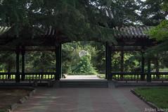 (liangjinjian) Tags: china summer geotagged sony beijing alpha chn a55 yanshan 2013  geo:lat=3972956833 geo:lon=11595550667