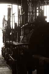 Locomotion Number 1 (ratboy2008) Tags: robert 1 george railway beamish number darlington stockton locomotion 1825 stephenson