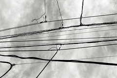 Minami-Aoyama. (Davide Filippini ) Tags: blackandwhite bw blancoynegro monochrome japan tokyo noiretblanc cable pb nb bn  sw  japo electricidad   japon pretoebranco giappone biancoenero kabel nogizaka elettricit elektrik japn electricidade elektrizitt cavi minamiaoyama elektriciteit   schwarzweis nhtbn  cavo   cble kablo  in      davidefilippini cbleslectriques   entrng  fujifilmx100 dycp