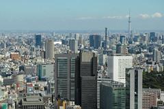 Tokyo Sky Tree from Shinjuku (shinichiro*) Tags: autumn japan tokyo october shinjuku sigma getty crazyshin  foveon 2013  dp3m sigmadp3merrill 20131008sdim0285 10151271116