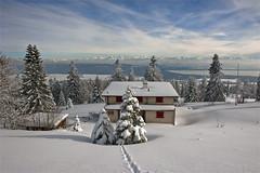Swiss winter time , a house with a view to the Alps.  No. 3187. (Izakigur) Tags: schnee winter snow mountains alps les alpes landscape liberty schweiz switzerland nc nikon europa europe flickr suisse suiza swiss feel ne jura neige alpen helvetia nikkor 1001nights svizzera neuchatel neuchâtel lepetitprince ch dieschweiz musictomyeyes suïssa suizo chauxdefonds romandie swissromande lachauxdefonds myswitzerland lavuedesalpes lasuisse سويسرا שווייץ cantondeneuchâtel d700 nikond700 nikkor2470f28 nikkor2470 izakigur nikon2470f28 nikon2470mmf28g cantonofneuchatel suisia laventuresuisse izakiguralps izakigurjura izakigurd700 izakigur2013
