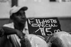 Belém out-2013-0616 (caroldantas33) Tags: mar comida feira peixe filhote pará belém pescadores veropeso peixaria pirarucú xareu aracú