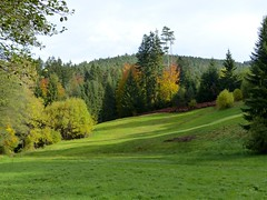 Black Forest: Meadow (romanboed) Tags: travel autumn trees black fall leaves forest germany landscape europe hiking meadow foliage schwarzwald baiersbronn mitteltal