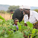Makoni Organic Farmers Association