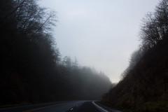 Foggy (judd.furlong) Tags: