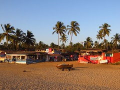 Bogmalo Evenings (Saumil U. Shah) Tags: ocean travel light sunset sea sun india tourism beach water palms relax golden evening sand flickr surf waves coconut indian goa tourist palm shore leisure arabian carefree goldenhour shah arabiansea  bogmalo saumil incredibleindia bogmallo saumilshah