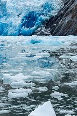 _MG_5016a (markbyzewski) Tags: alaska ugly iceberg tracyarm southsawyerglacier