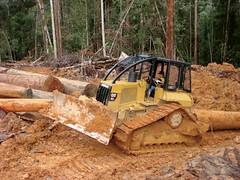 CATERPILLAR SKIDDER (Static Phil) Tags: caterpillar skidder caterpillarskidder forestryequipment