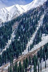 Mountains 3 ... (Bijanfotografy) Tags: nikon180mmf28afd nikon nikond800 india jammukashmir kashmir sonamarg mountains mountainside snow