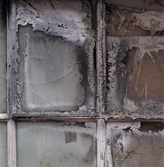 Speak Low (Professor Bop) Tags: professorbop drjazz olympusem1 window mosca decay