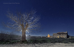 Nunca apagues la luz / Never turn off the light (Antonio López-Torres Sánchez) Tags: libisosanorum fotografíanocturna nightphotography árbol tree luzmágica magicallight noche night estrellas stars ruins ruinas chinchillademontearagón castillalamancha lamancha albacete españa spain