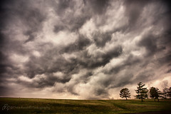 Spring Storms (d_russell) Tags: 365the2017edition 3652017 29mar17 day88365 shawneemissionpark johnsoncounty park cloud clouds tree