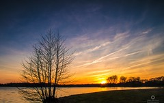 Cirrus clouds/ sluierbewolking (Marc.van.Veen) Tags: lines tree outdoor sly clouds distanttrees blue yellow yellowandblue lowsun sunset gradfilter f22 18mm bussloo gelderland lake pentaxk50