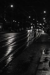 Roncesvalles (jer1961) Tags: toronto roncesvalles blackandwhite bw streetcar streetcartracks pavement wetpavement rain wet texture