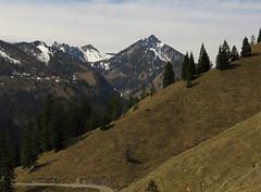 Hochmiesing (aniko e) Tags: seeberg bayern bayerischevoralpen bavaria bavarianprealps spring hiking hike outdoors snow germany rotwand ruchenköpfe auerspitz hochmiesing