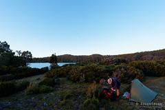 20170228-12-Camp (Roger T Wong) Tags: australia greatpinetier np nationalpark sel1635z sony1635 sonya7ii sonyalpha7ii sonyfe1635mmf4zaosscarlzeissvariotessart sonyilce7m2 tasmania wha wallsofjerusalem worldheritagearea bushwalk camp hike tent trektramp walk