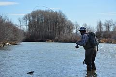 DSC_0499 (Red's Fly Shop) Tags: noe net wadefishing