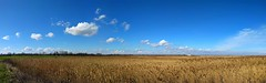 venice lagoon wetlands open space clouds panorama... (Photo: maxo1965 on Flickr)