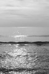 DSC_0349 (sydneycohn) Tags: lake ocean water sea light horizon vast sky clouds dismal moody gloomy pretty serene tranquil