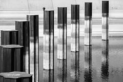 Duisburg-Innenhafen (Sabine Kierstead) Tags: outdoor duisburg innenhafen germany blackandwhite black bw bird white weis wasser water schwarz schwarzweis sw spiegelung